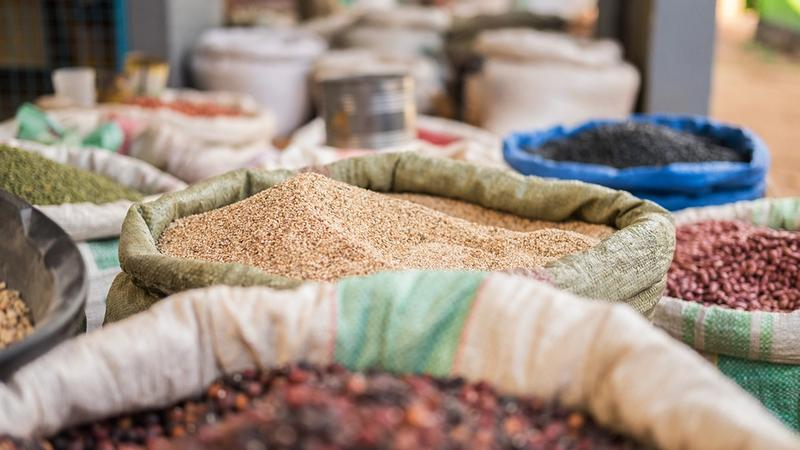 Discover Ancient African Grains