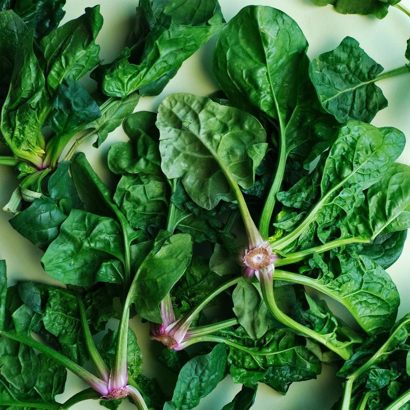 Super Spinach: Food Of The Future