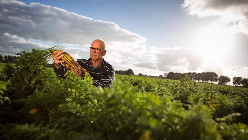 50 Alimentos del Futuro: 2019, un año lleno de pequeños logros