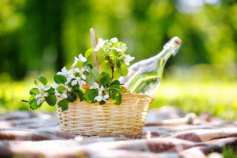 Recibe la Primavera con la Frescura de las Recetas Maizena®