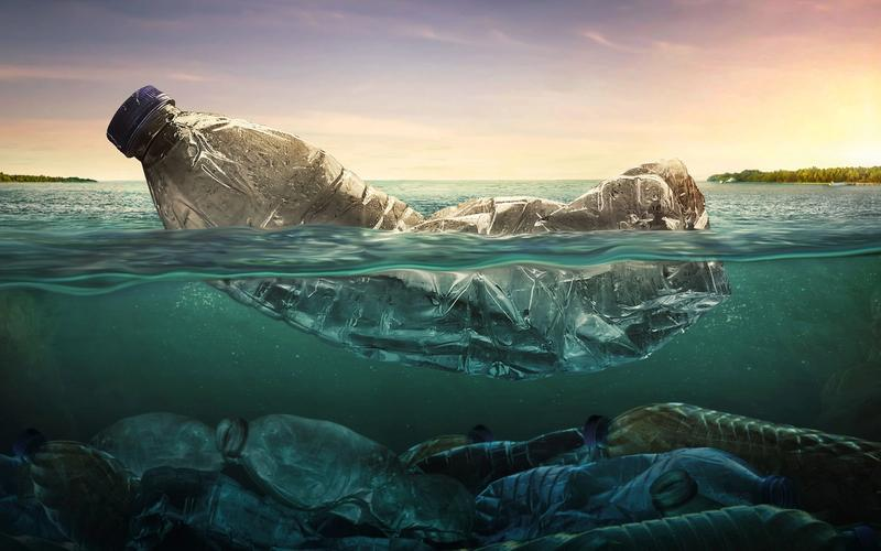No Más Plástico: Cuidemos El Planeta