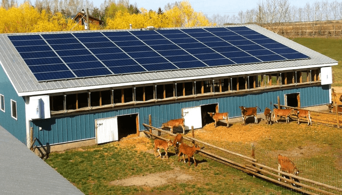 Solar with Batteries for Farm Self Reliance
