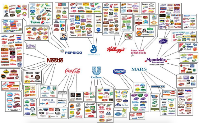 10 Companies Own All Food Brands In The World's infographic