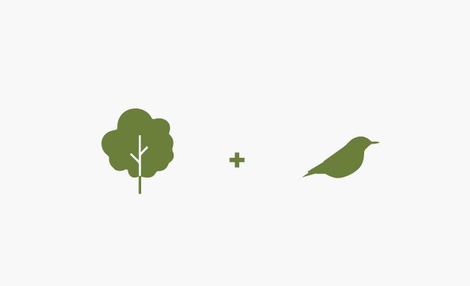 Sierra Club logo design inspiration