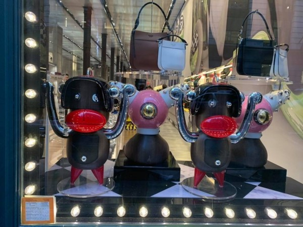 Prada Unfortunate Display