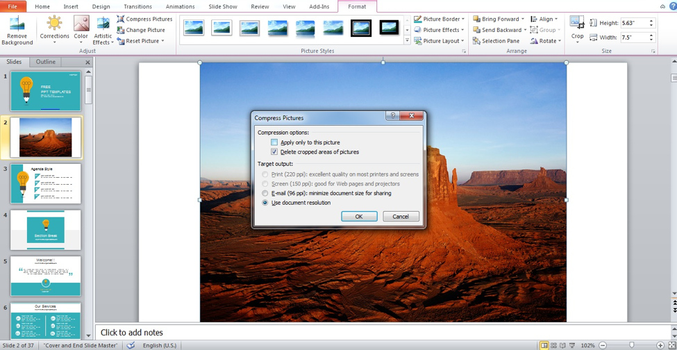Preview of Compress Picture dialog box