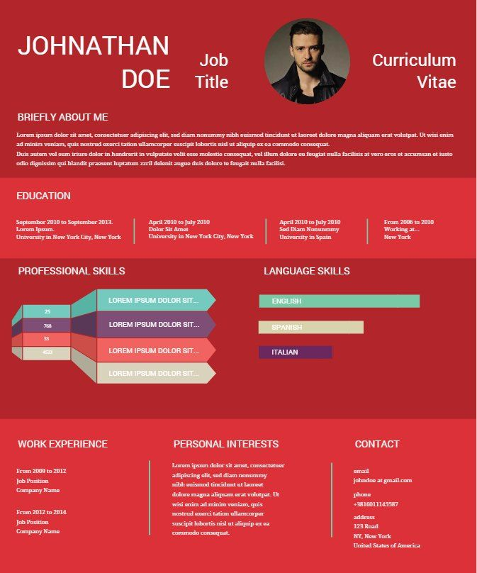 15+ Infographic Resume Ideas For Serious Business
