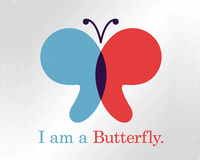 Catherine's Butterflies