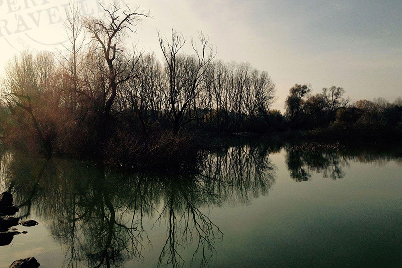 Lake Chiusi in the Autumn