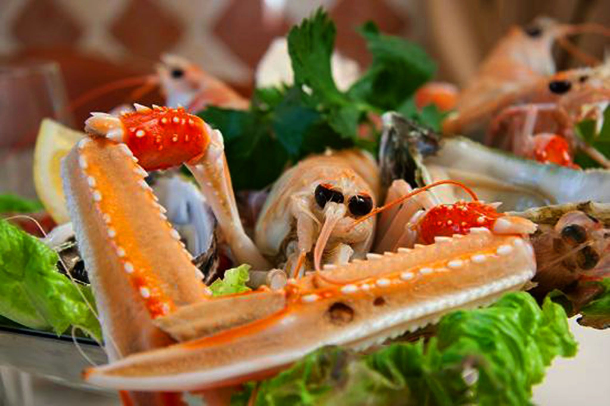 Seafood was a rare and expensive delicacy in the Renaissance.