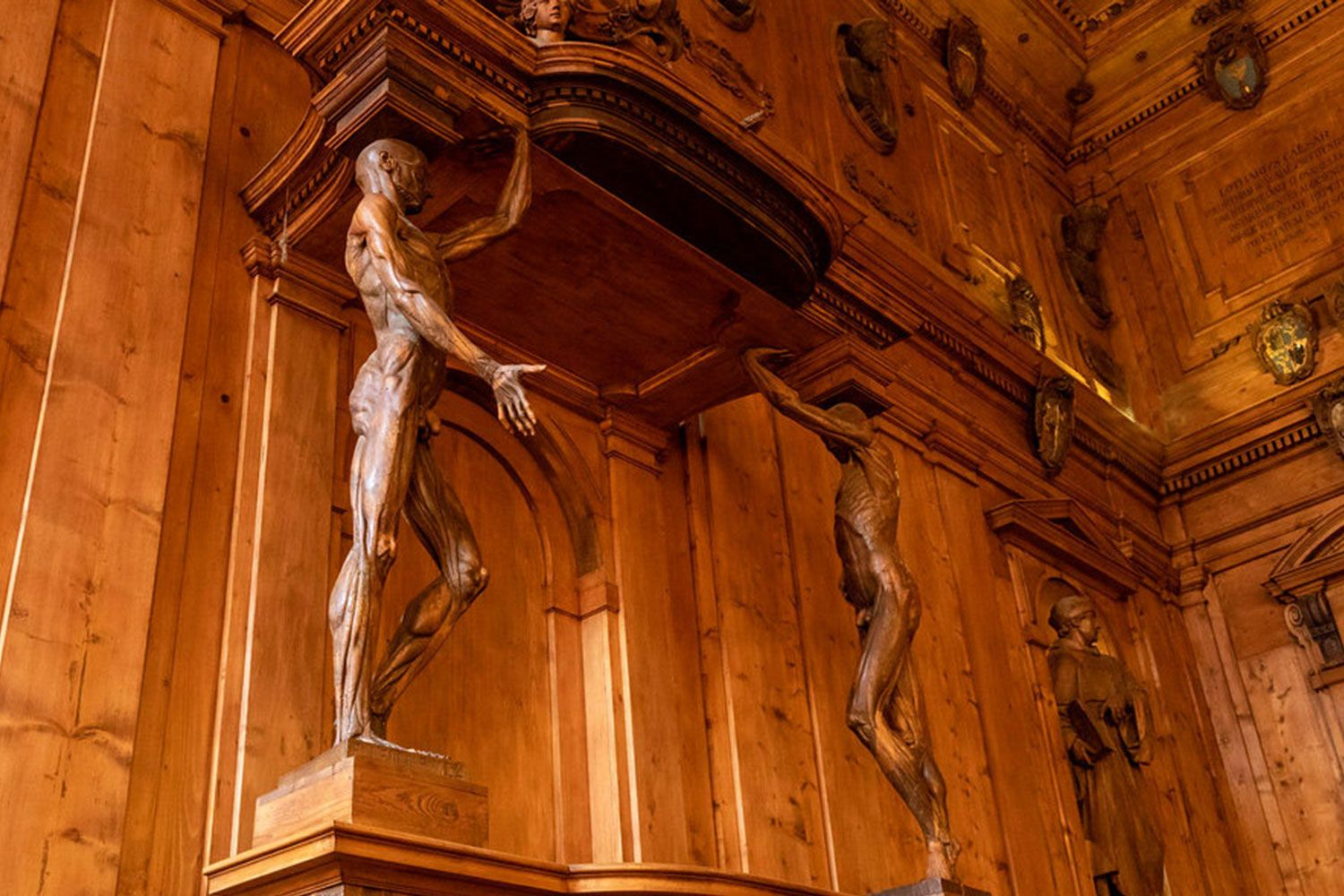 Carved wooden anatomical human figures from the 16th century in the Anatomy Room