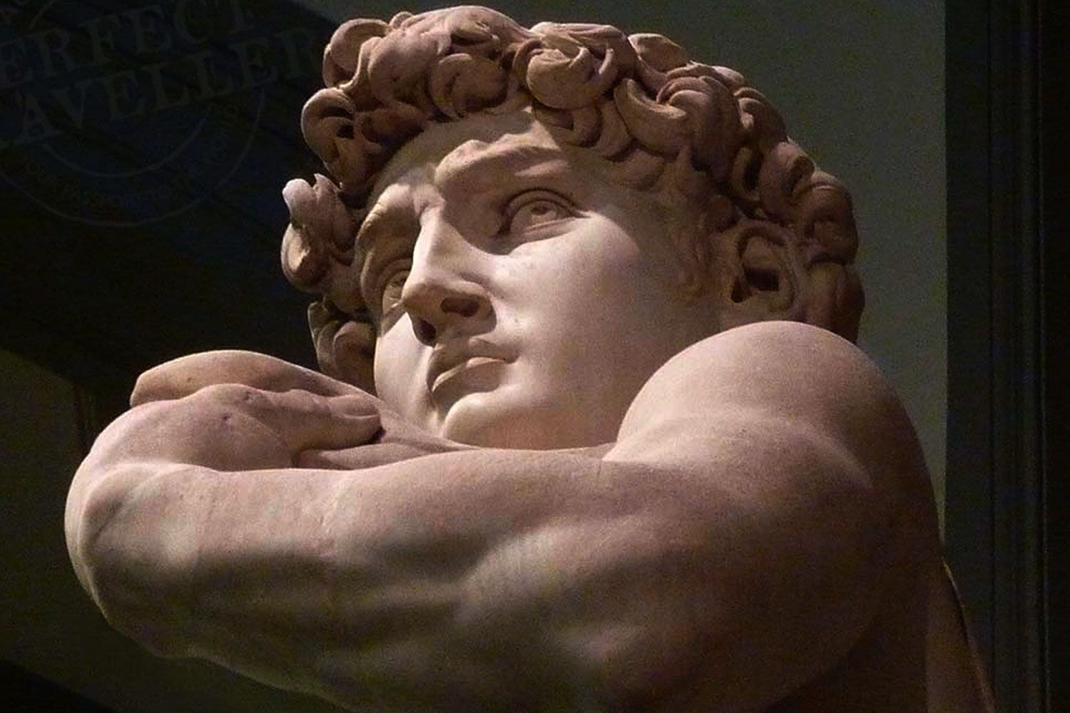 David by Michelangelo in the Accademia in Florence.