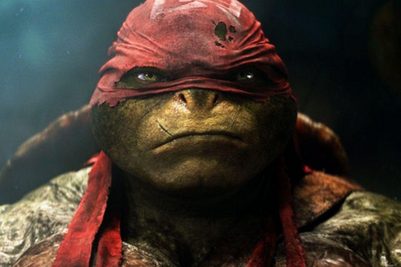 Raphael Mutant Ninja Turtle, opp's!