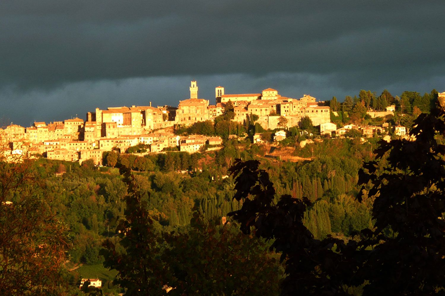 Montepulciano perched on its hill.
