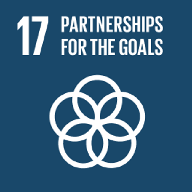 UN Sustainable Development Goals Partnerships for the Goals