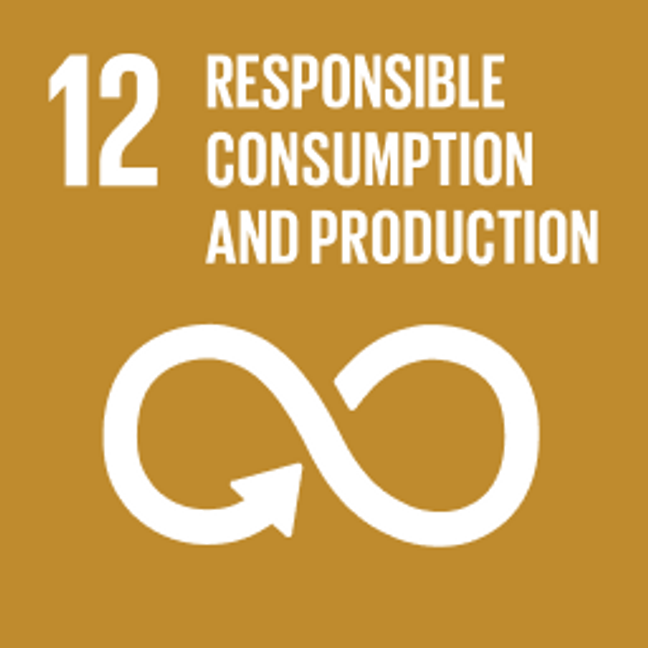 UN Sustainable Development Goals Responsible Consumption and Production