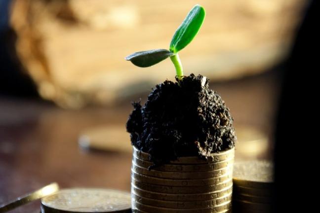 impact investing; sdg