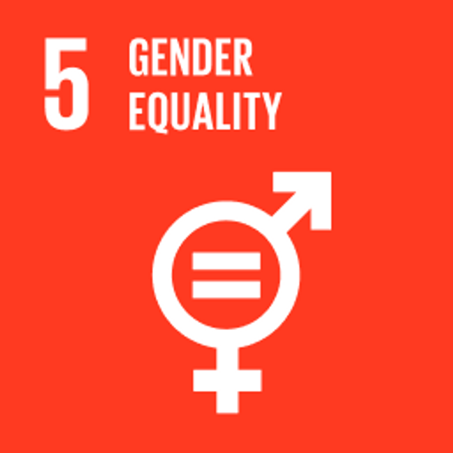 UN Sustainable Development Goals Gender Equality