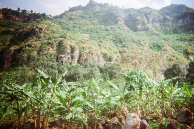 People are cruising and harvesting onion and bananas on Mt Wanale as you have seen.