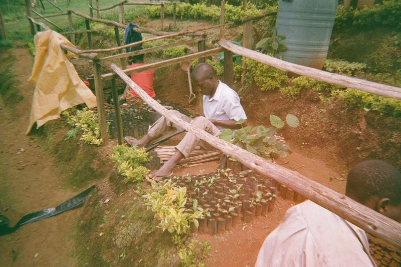 The team managing the plant / tree nursery.