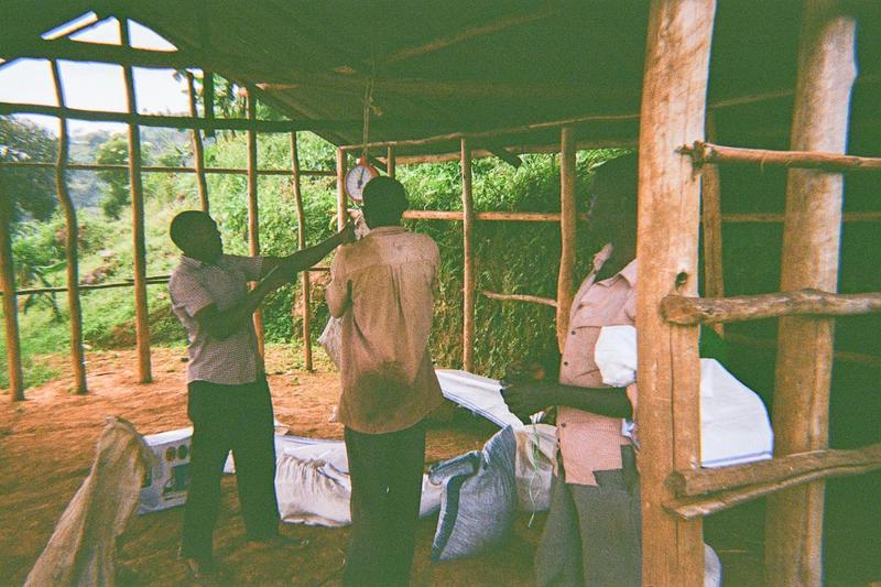 Team meeting, buying coffee cherries from Bukhanakua site.