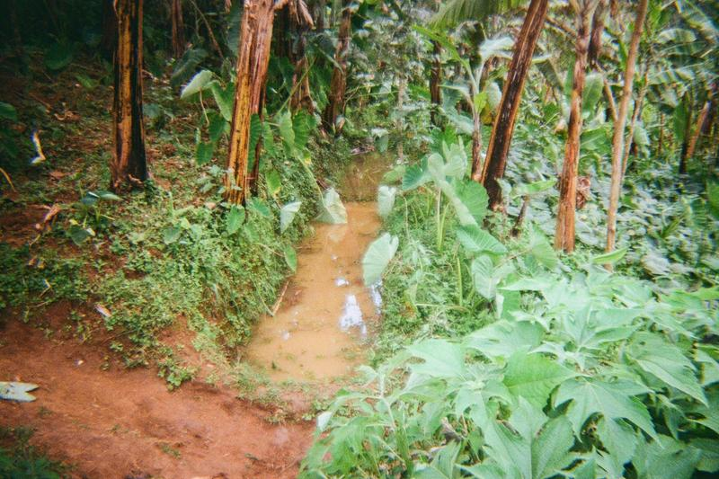 This is the way of controlling soil erosion in Wanale sub-country by digging contour band.