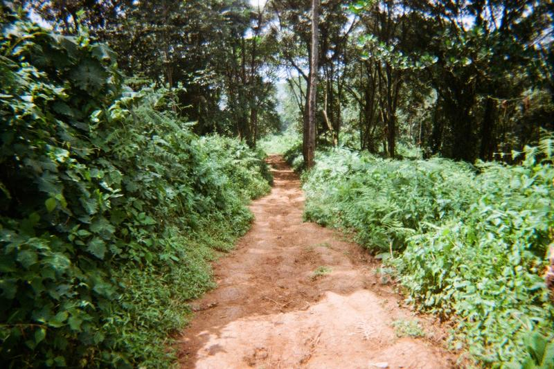 This is the way from Walelela trading centre to Bukhanakwa buying centre in Habanyole Parish