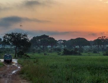 10 DAYS UGANDA AND RWANDA