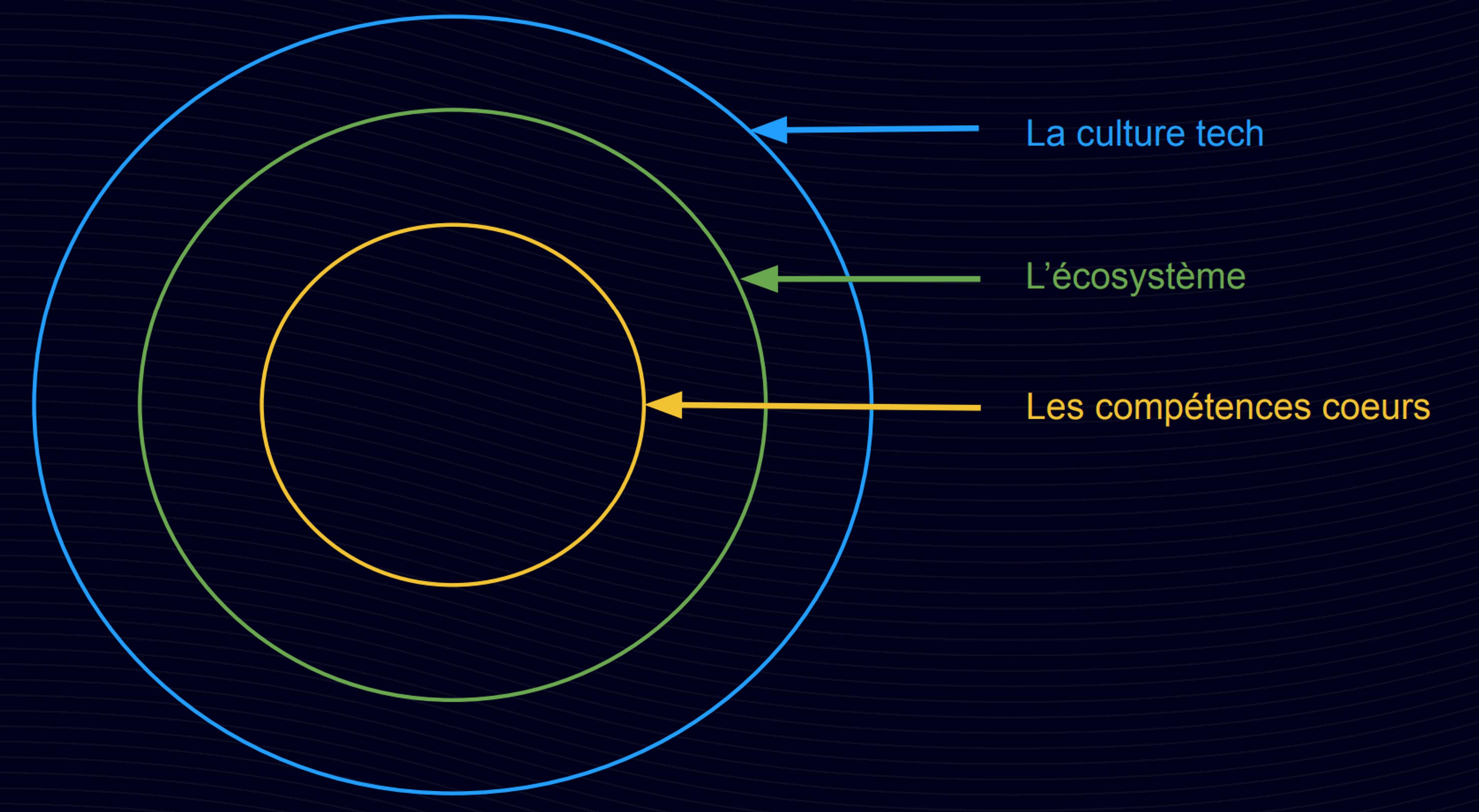 Les cercles de compétences regroupent les compétences coeurs, les compétences éccosystème et la culture tech