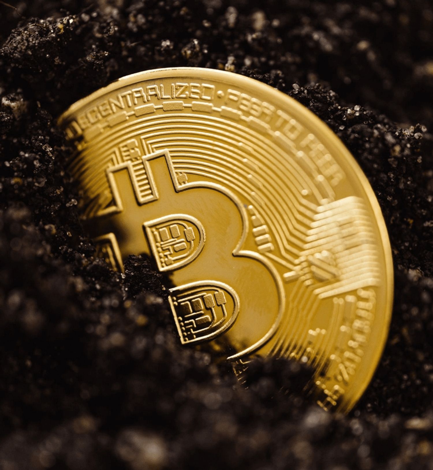 Cryptocurrency Payments Now Available at Shelter Market