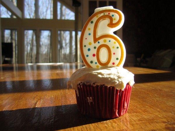 Dogu 6 Year Anniversary
