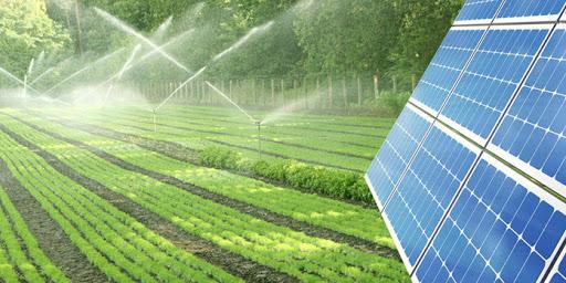 Sistema para irrigação