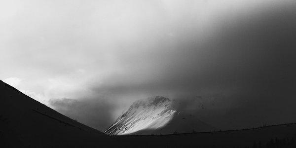 Silhouette | Art Lasovsky