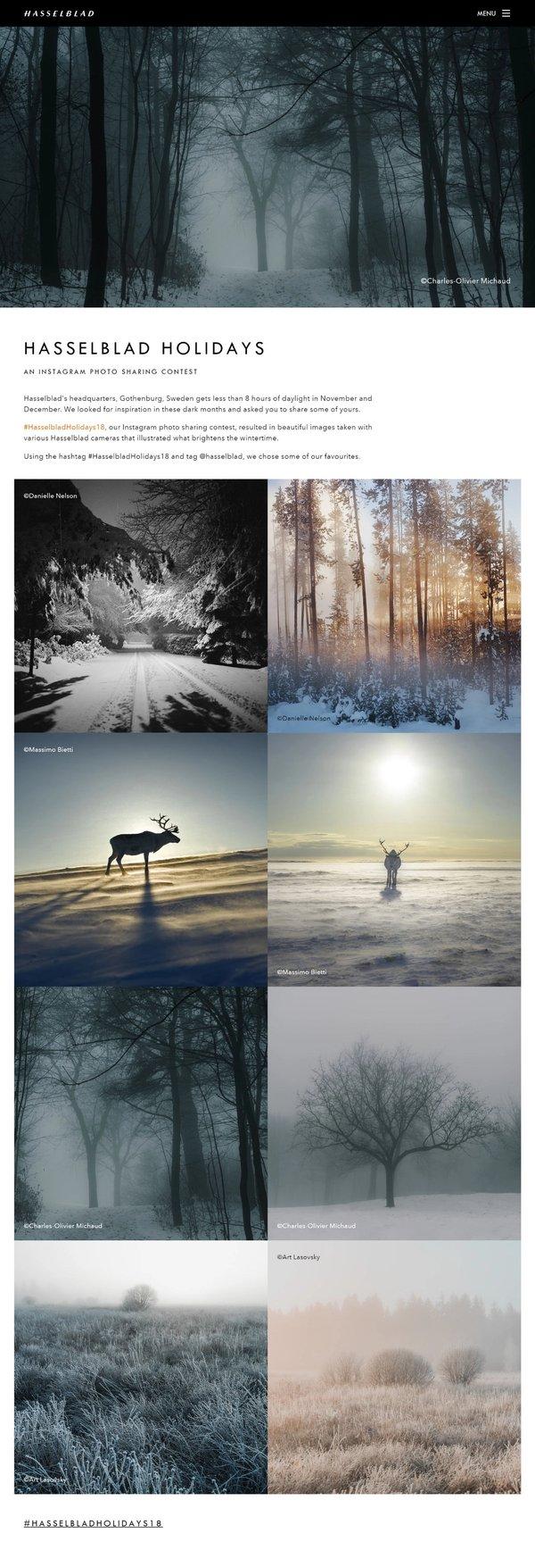 Page on Hasselblad website | Art Lasovsky