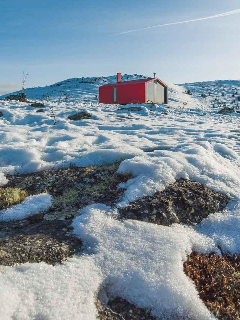 Dubldom in tundra