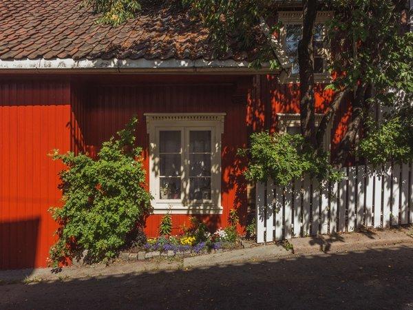 Rød huset | Art Lasovsky