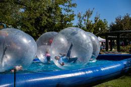 WOW Bubbles