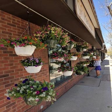 Mariposa Plants & Flowers