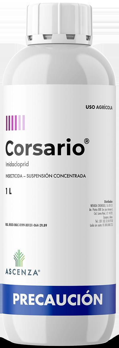 Corsario®
