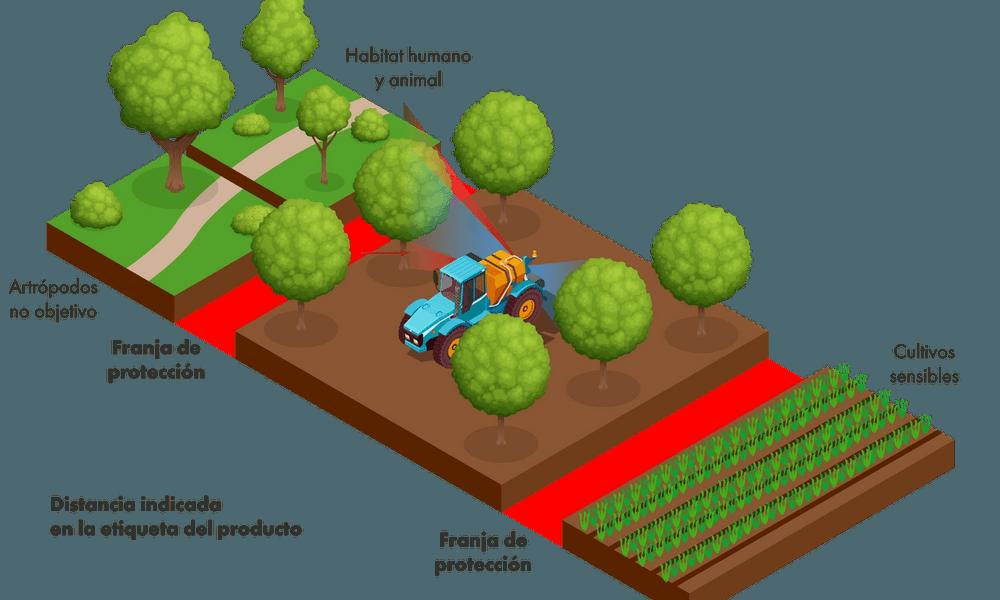 ASCENZA_SprayBufferZones_Spain_PD_v01.png