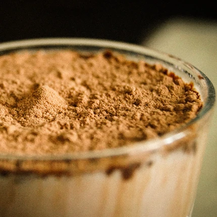 Plant vs. Whey Protein - What Should You Choose