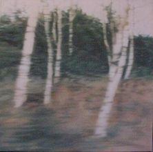 Untitled - Trees 2