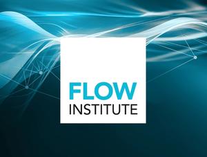 The Flow Institute