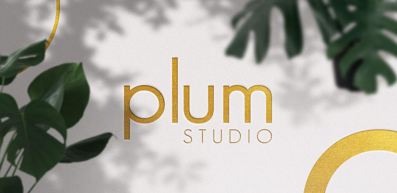 Graphic Design services for Plum Studio