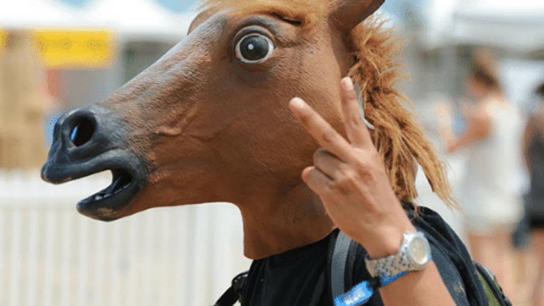 Hevosenpaskakriisiä pysäköinnissä ja uudenlaisissa kaupunkiympäristöissä.