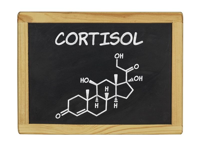 So, what aboutCORTISOL?