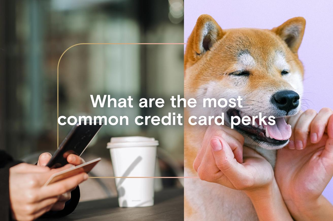 What are the most common credit card perks?