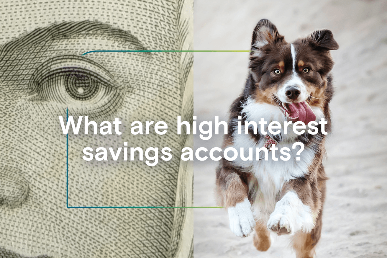 What are high interest savings accounts?