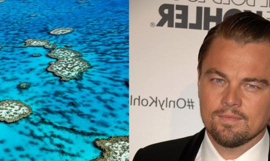 Leonardo DiCaprio: Great Barrier Reef is Being Devastated