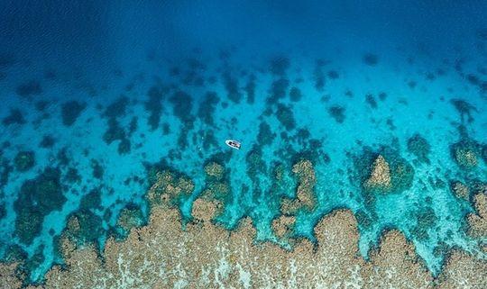 Community Reef Restoration